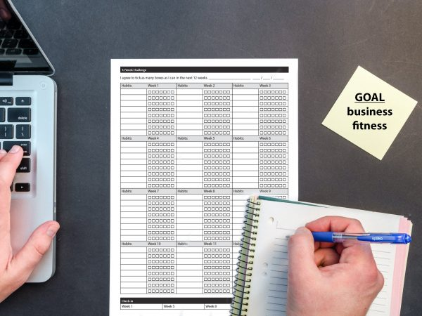 printable 12 week checklist for fitness wellness business life goals track many things each day for three months with this challenge checklist easy to use print and fill in the boxes